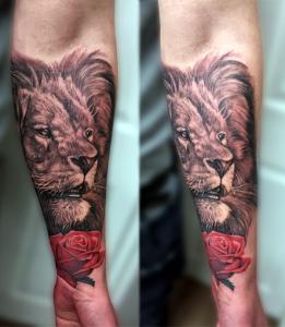 lionsleeve